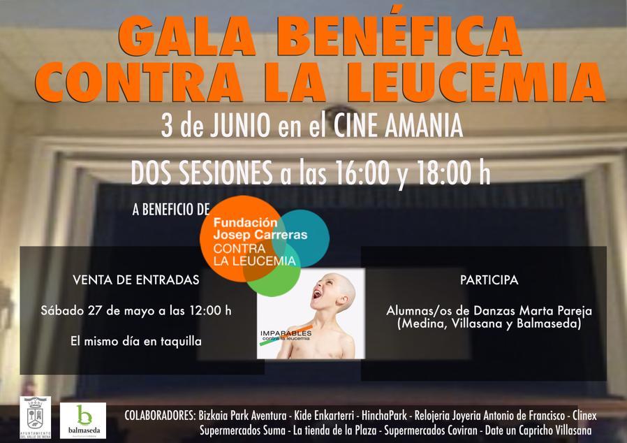 Gala benèfica Vilasana
