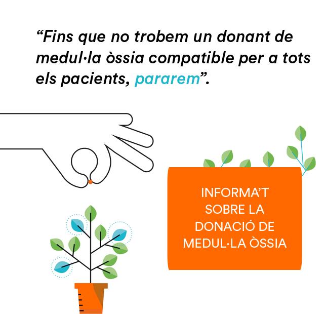 Banner - Dona médula - CA