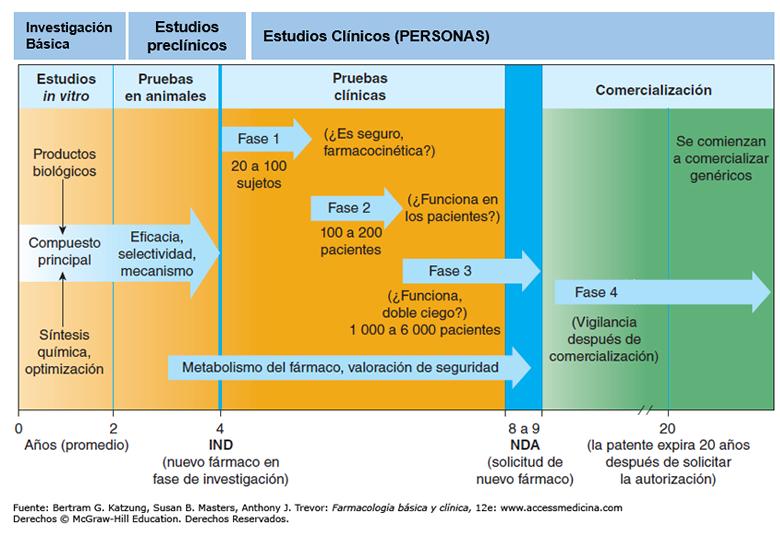 fases ensayo clínico