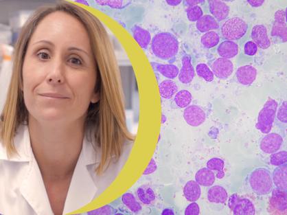 Proyecto Biola Javierre leucemia linfoblástica aguda