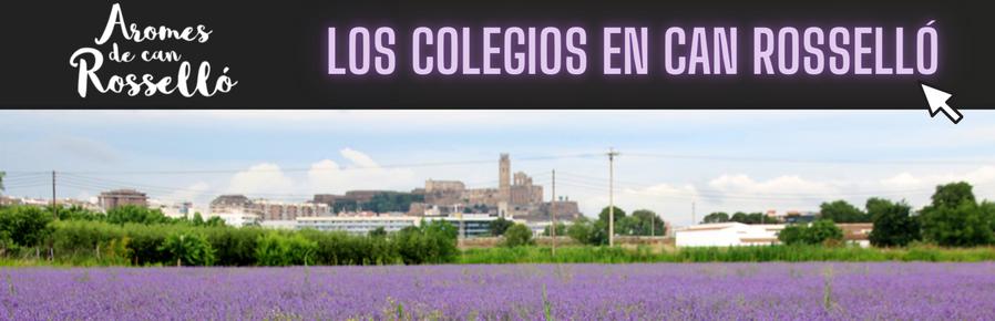 Escuelas solidarias en Can Rosselló