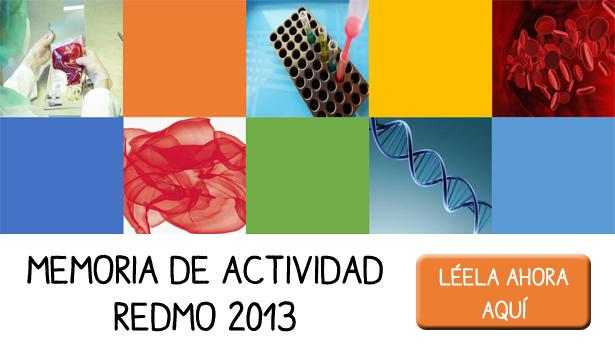 Memoria REDMO 2013