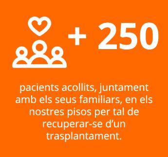 Numero pacients pisos