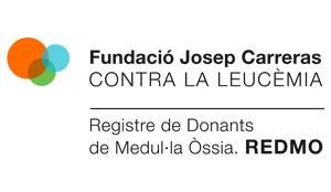 Logo REDMO cat newsletter