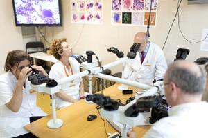 Foto investigadors Can Ruti Dr Feliu 2